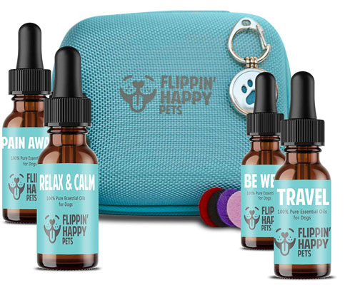 Best Starter Kit for Dog Essential Oils