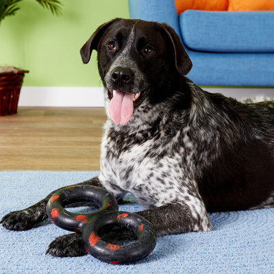 Goughnuts - TuG Interactive Large Dog Toy - MaXX Black