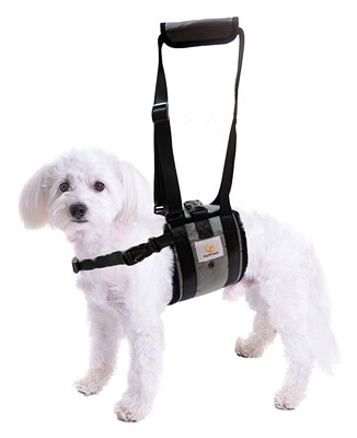 Veterinarian Approved Dog Support Harness