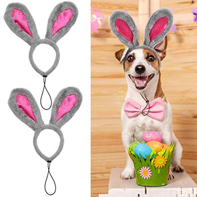 Easter Bunny Headband for Dogs