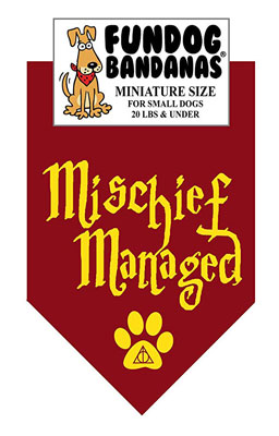 Mischief Managed Dog Bandana