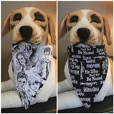 Reversible Harry Potter & Voldemort Bandana