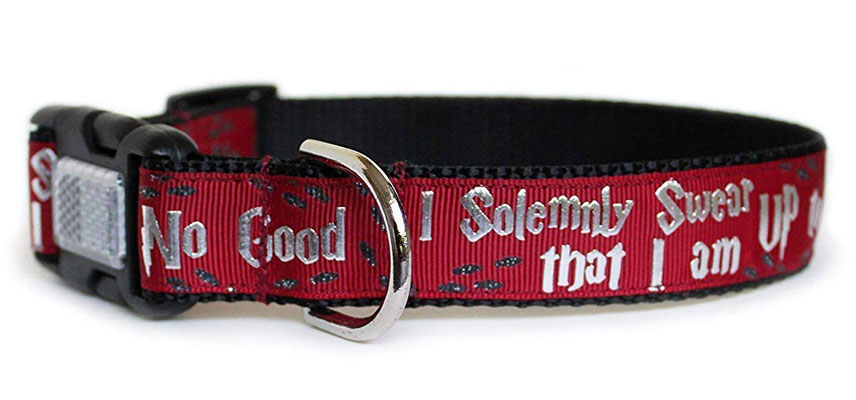 Harry Potter Up to No Good Dog Collar