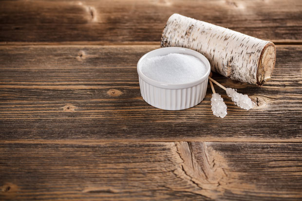 Xylitol Toxic to Dogs