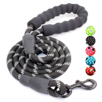 BAAPET 5 FT Dog Leash