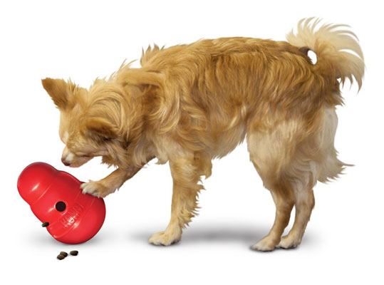 Kong Wobbler for Dogs with Anxiety