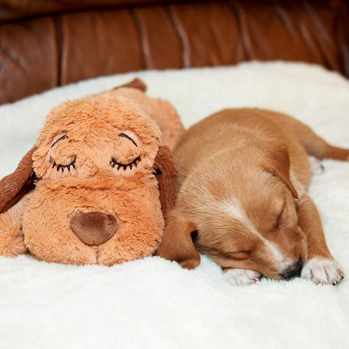 Snuggle Puppy for Dogs with Anxiety