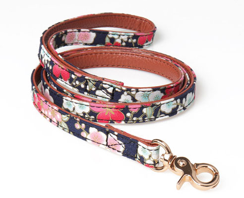 Leepets Dog Collar for Small Dog